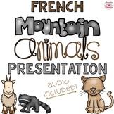 French Mountain Animals Vocabulary PowerPoint Presentation