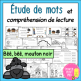 French Nursery Rhymes - Comptine - COMPRÉHENSION Activités Reading Comprehension