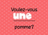 French Partitive Article Practice Power Point