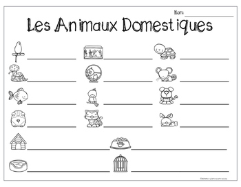 French Pets Write the Room