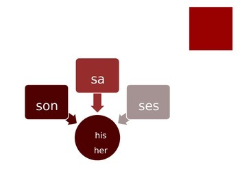 French - Powerpoint - Possessive Adjectives and Irregular Adjectives