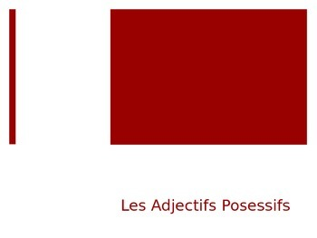 French - Powerpoint - Possessive Adjectives and Irregular