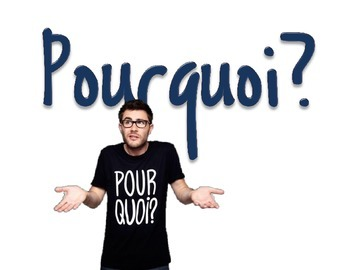 French Question Word Posters with Authentic Images - NO English!