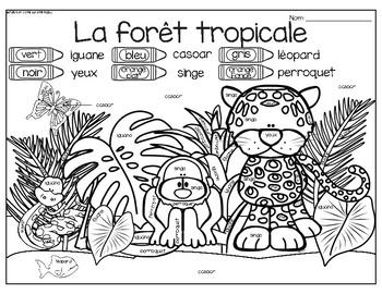 French Rainforest Animals Write the Room- Les animaux de la forêt tropicale