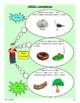 French Reading Comprehension Activity (June)
