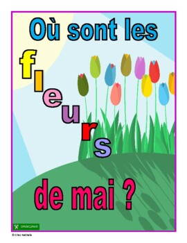 French Reading Comprehension Activity (May)