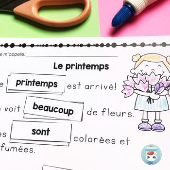French Reading Comprehension | Compréhension de lecture en français