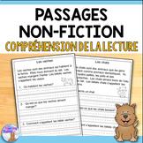 French Reading Comprehension Passages (Compréhension de la