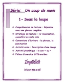 French Reading: Comprehension, and Grammar / Lecture: Stra