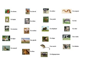 French Animals Speaking Activity for Small Groups (Quick Prep)
