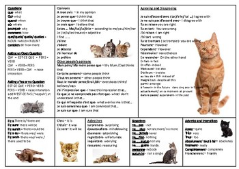 French Speaking Cat Mat.