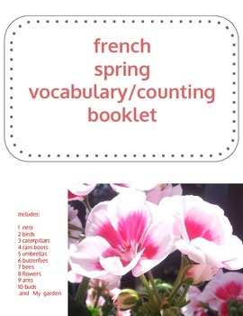 French Spring Vocabulary Drawing Booklet