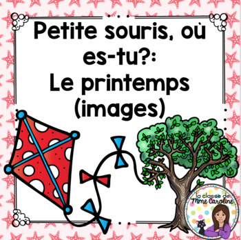 French Spring Vocabulary Game: Petite souris, où es-tu? Le Printemps (photos)