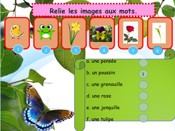 French Spring, le printemps (animals, flowers) PPT beginners/pre-intermediate