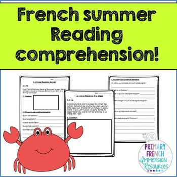 French - Summer reading comprehension sheets