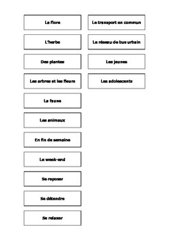 French Synonyms Teaching Resources.