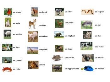 French Animals Task Cards, Vocabulary