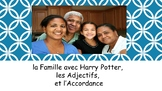 French 1 Unit- Family, Adjectives, Adjective Agreement, with project