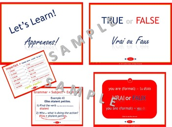 French Verb To Be... être, Interactive Past Tense Packet (imparfait)
