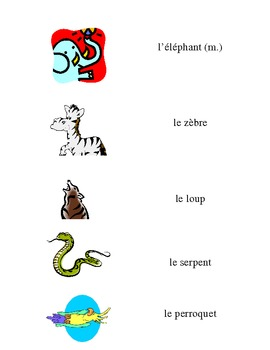 French Vocabulary Flash Cards: Exotic Animals / Animaux Exotiques