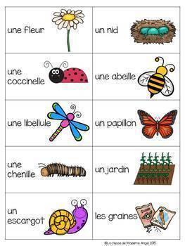 French Vocabulary Game BUNDLE - Tapette à mouches (thèmes variés)
