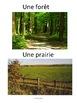 """French: """"Voyages"""", Travel, Vocabulaire et cartes éclairs"""