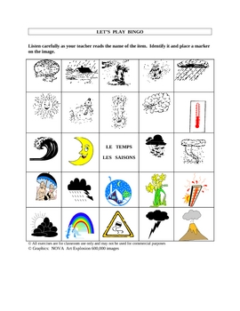 French Weather Picture Bingo and Hidden Word Puzzle