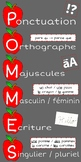 French Writing Reminders Poster (POMMES)