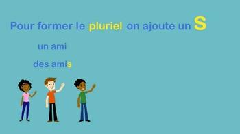 French Plural Video - Le pluriel vidéo (sample)