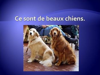 French beau, nouveau, vieux practice