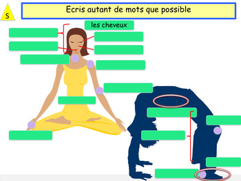 French body parts, le corps PPT for beginners