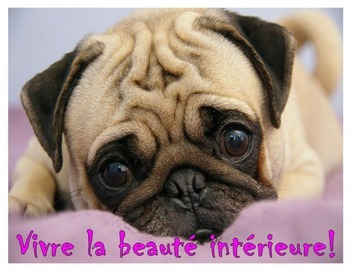 French bulletin board motivational posters for the classroom
