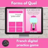 French digital game - quel, quelle, quels and quelles