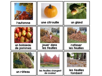 French fall / l'automne - word wall words, flashcards, and activities
