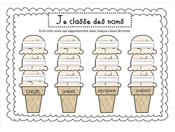 French /francais Noun sorting activity