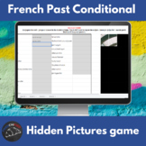 French past conditional verbs - Hidden pictures game