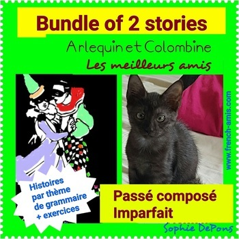 French reading -  Past tense : Bundle of 2 stories with exercises