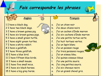 French pets animaux domestiques full lesson for beginners