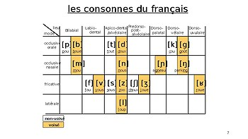 French phonetics consonants