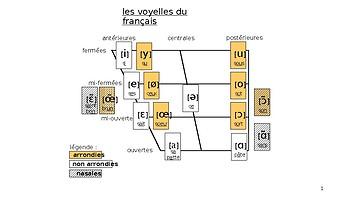 French phonetics vowels