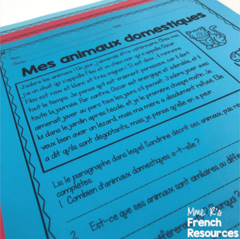 French reading comprehension  for beginners set 2 COMPRÉHENSION DE LECTURE