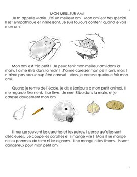 French Reading Comprehension Hamster And Activities