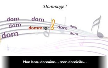 "French spelling and grammar in songs, Orthochanson ""Dommage"""