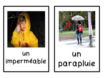 French spring / le printemps - flashcards/word wall/bang game