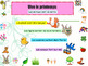 French spring (animals, flowers, vegetables) le printemps PPT for beginners