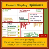 French wall display expressing and justifying opinions