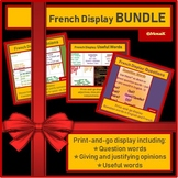 French display opinions questions adjectives BUNDLE