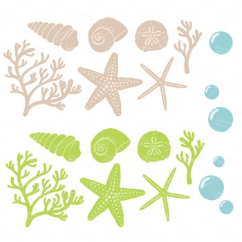 Fresh Coral & Seashells Clipart