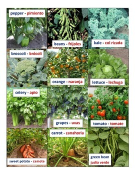 Fresh Fruit and Vegetable Cards (English/Spanish)