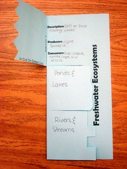 Freshwater Ecosystems Study Aid/Interactive Notebook Foldable